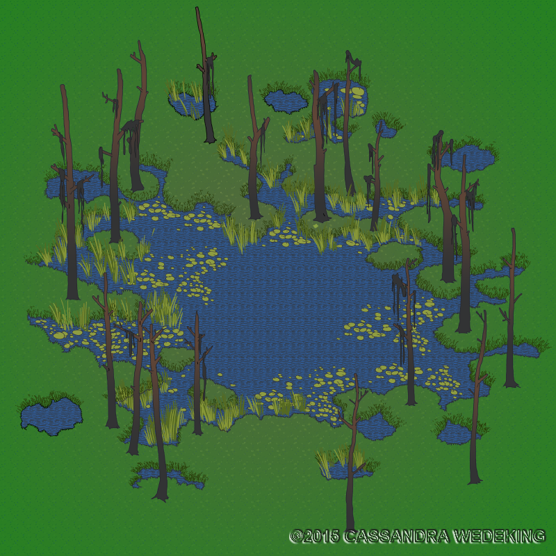 isometric view of a bog